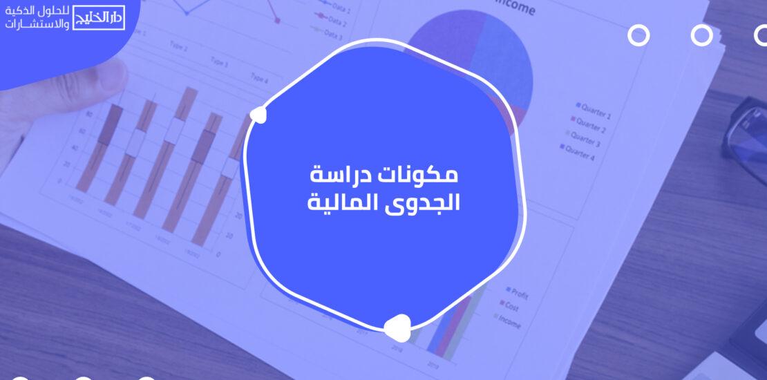 دراسة الجدوى المالية